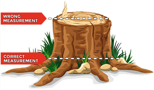 Stump Removal Quoting